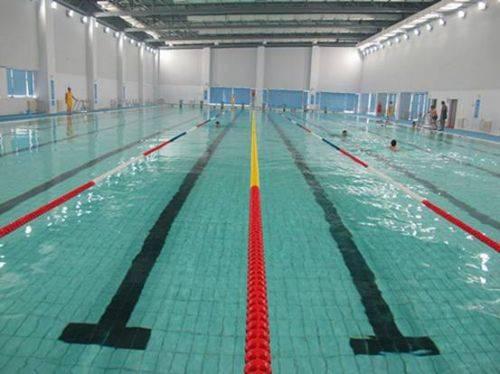 南京大学正常营业的游泳馆